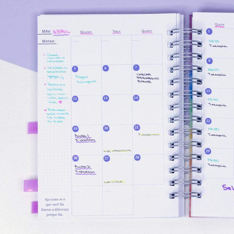 Miolo Planner Realize